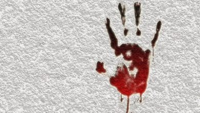 murder333.jpg