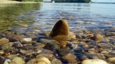 stone-river.jpg