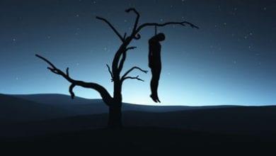 suicide3.jpg