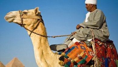 arab-muslim.jpg