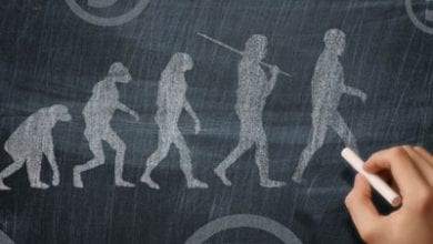 human-creation.jpg