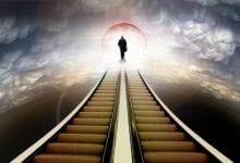 way-path.jpg
