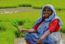 Photo of കർഷകവിരുദ്ധമായ ബ്രാഹ്മണിസം -1